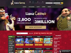 Program Affiliate Casino Llama
