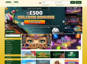 Program pre partnerov programu Green Dog Casino