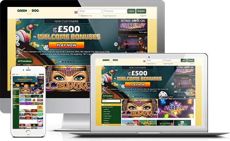 Join Green Dog Casino Affiliate Program