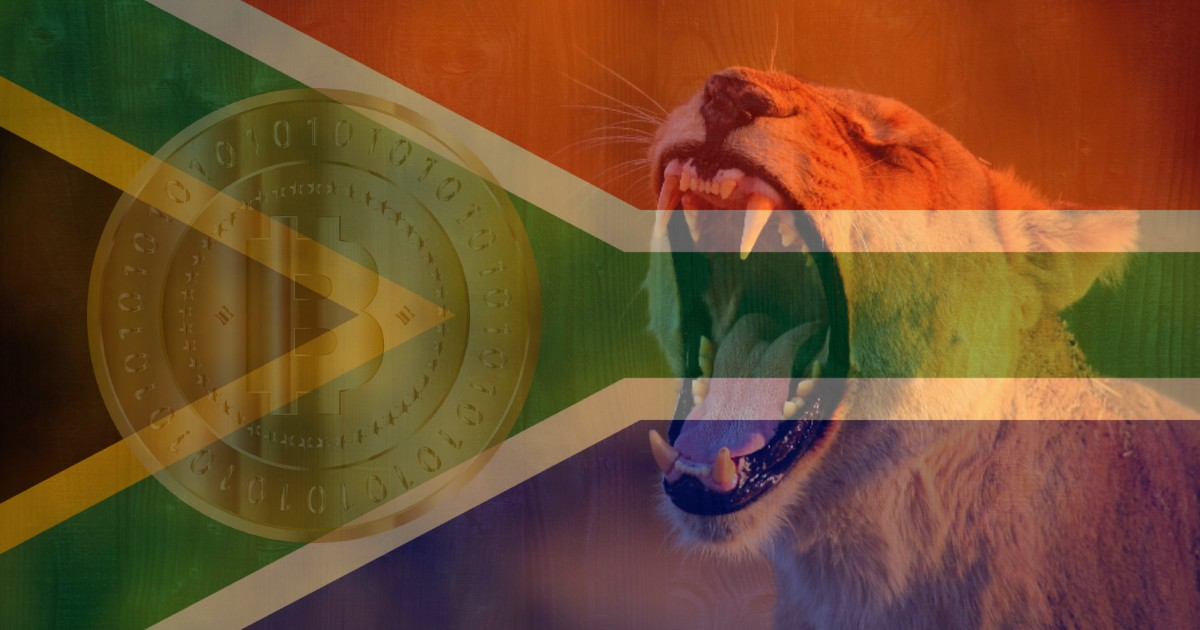 South Africa Holds Highest Crypto Ownership Ratio — Hootsuite Report